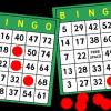 Bingo-148903  340