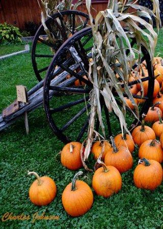 606 bragg farm pumpkins calendar